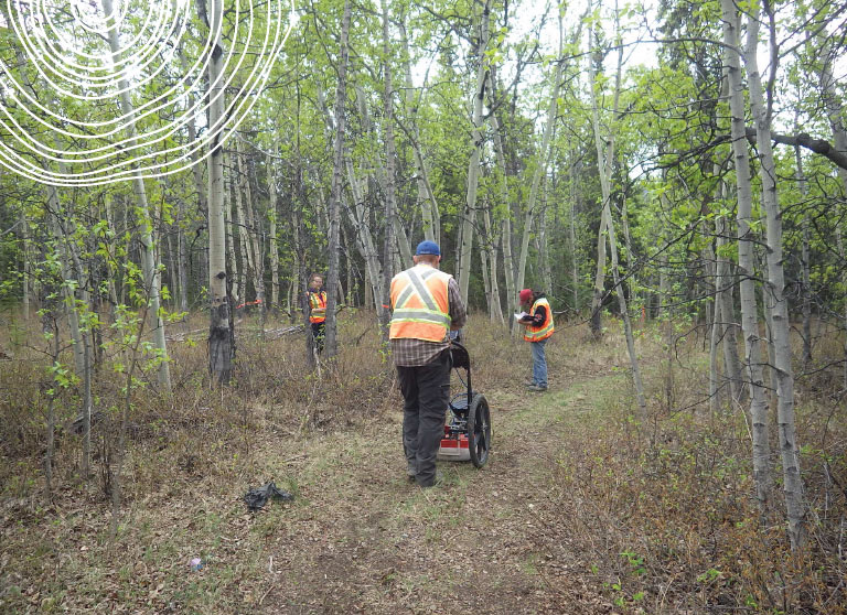 Ecofor workers using ground penetrating radar to survey work site