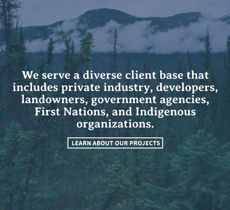 Homepage Slide 2 - Diverse Client Base
